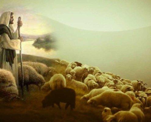 Boża troska i miłość