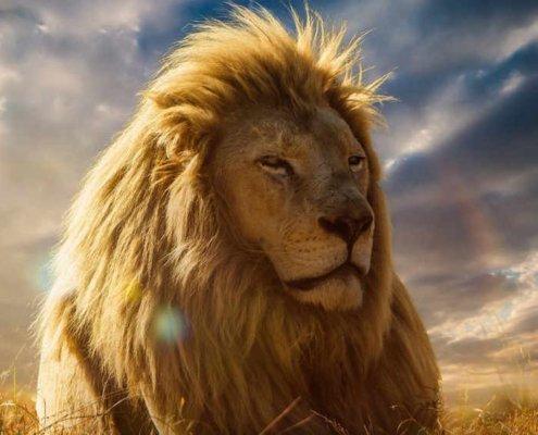 Niezwyciężony Król Pokoju